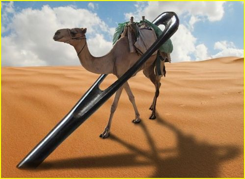 camel passing through needle